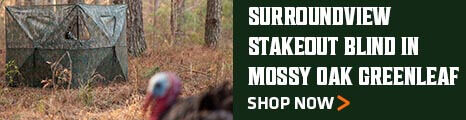 Surroundview Stakeout blind in Mossy Oak Greenleaf