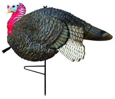 Gobbstopper Jake Turkey Decoy