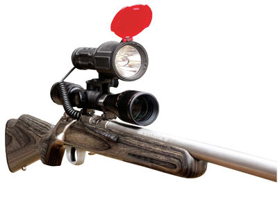 Varmint Light 200 yd