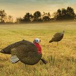 Gobbstopper Hen Turkey Decoy